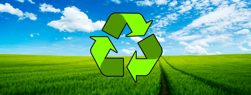 Waste Removal Essex County